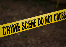 Bodies of 84 and 9 years old females found with gunshot wounds